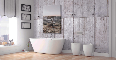 Bathroom Canvas Art What Are The Risks
